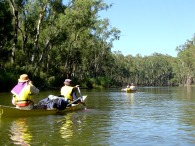 Canoeing on the Mighty Murray